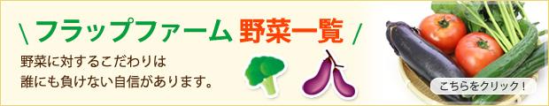 フラップファーム 野菜一覧